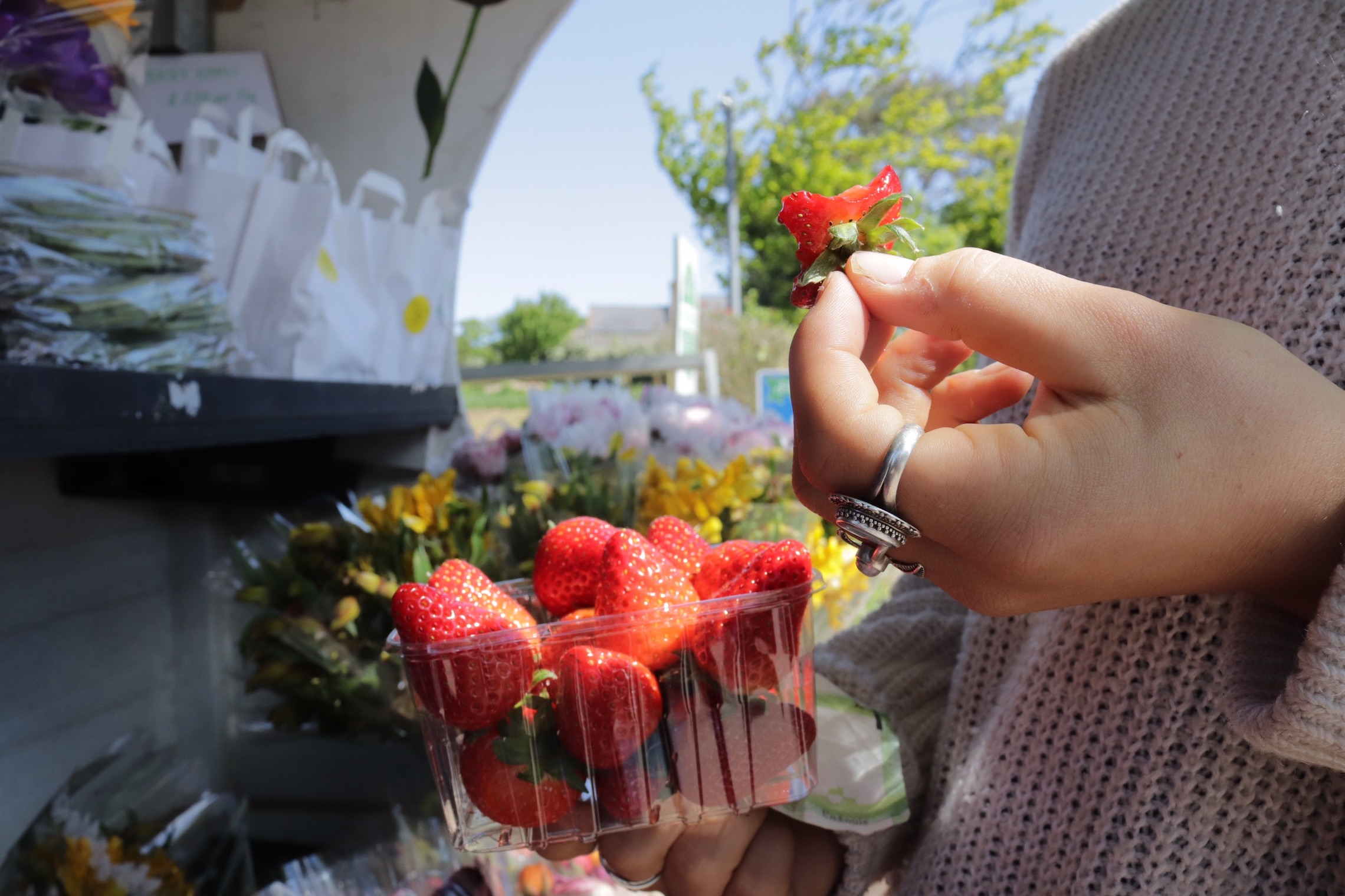 Purchasing Strawberries from a Roadside Stall